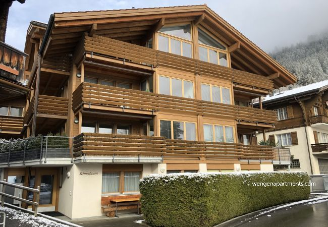 Apartment in Wengen - Chalet Schneehorn Penthouse